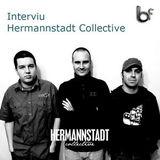Video - Interviu cu Hermannstadt Collective